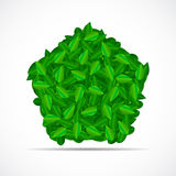 Natural Green Leaves Background. Vector Royalty Free Stock Images