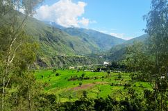 Natural Green Scenery background in Himachal Pradesh, India Royalty Free Stock Photo