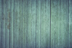 Natural green wood texture Stock Image