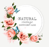 Natural greeting card with roses. Vector. Royalty Free Stock Images