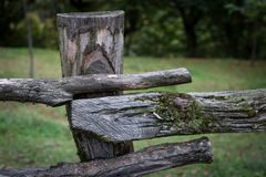 Natural hand made fence made of wooden tree brenches. Close up view of village fence with moss on wooden surface. Natural hand made fence made of wooden tree stock images