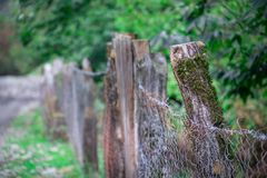 Natural hand made fence made of wooden tree brenches. Close up view of village fence with moss on wooden surface. Natural hand made fence made of wooden tree royalty free stock photos