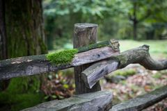 Natural hand made fence made of wooden tree brenches. Close up view of village fence with moss on wooden surface. Natural hand made fence made of wooden tree royalty free stock images
