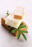 Natural handmade soap Stock Images