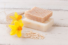Natural handmade soap with oats Stock Image