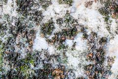 Natural hard rock or stone texture surface as background.  Royalty Free Stock Image