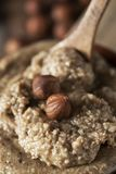 Natural hazelnut paste. Closeup of a bowl with natural hazelnut paste and some shelled hazelnuts on top and on the background royalty free stock image