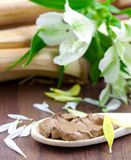 Natural healing earth. On spoon Royalty Free Stock Image