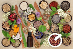 Natural Healing Herbs and Flowers royalty free stock photo