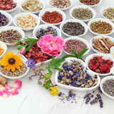 Natural Health Care Royalty Free Stock Photo