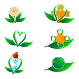 Natural health icons Stock Images