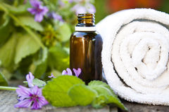 Natural health. Products, medicine natural stock image
