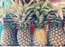 Natural and healthy Pineapple royalty free stock photography