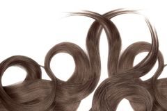 Brown chocolate hair isolated on white background. Long beautiful ponytail in shape of circle. Natural healthy hair isolated on white background. Detailed stock photo