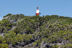 Natural heather forest and lighthouse landscape in Sao Jorge. Az Stock Image