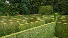 Natural hedge labyrinth maze. Natural hedge labyrinth or maze in a formal castle garden Stock Photos
