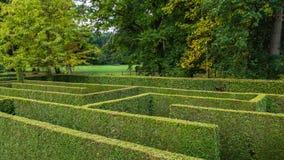 Natural hedge labyrinth maze Stock Photos