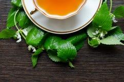 Natural herbal anti-inflammatory - organic dead-nettle tea Royalty Free Stock Photos