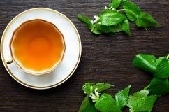 Natural herbal antiphlogistic - organic dead-nettle tea Stock Photo