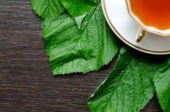 Natural herbal antipyretic - organic raspberry leaves tea Stock Photos