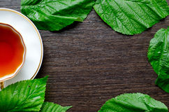 Natural herbal antipyretic - organic raspberry leaves tea Stock Images