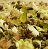 Natural herbal ingredient Royalty Free Stock Photo