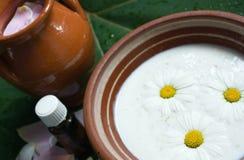 Natural herbal medicinal spa Stock Image