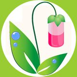 Natural herbal medicine Royalty Free Stock Photography