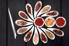 Natural Herbal Medicine Royalty Free Stock Images