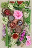 Natural Herbal  Medicine Royalty Free Stock Photos