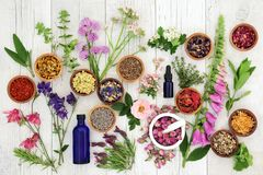 Natural Herbal Medicine. Selection with herbs and flowers in wooden bowls and loose, glass aromatherapy essential oil bottles and mortar with pestle on rustic stock photos