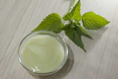 Natural herbal nettle hair balm Royalty Free Stock Photography