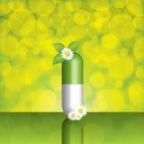Natural herbal pill Royalty Free Stock Image