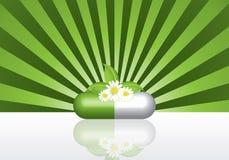 Natural herbal pill Stock Photos