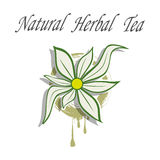 Natural Herbal Tea Stock Image