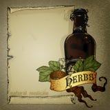 Natural herbs Stock Photography