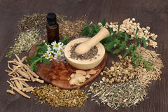 Natural Herbs for Anxiety Disorders Royalty Free Stock Photos
