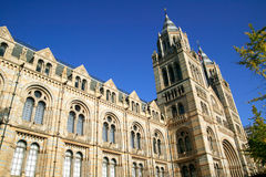 Natural History Museum. The Natural History Museum built between 1873-80 located on Exhibition Road in London's Kensington is renowned for its collection of Royalty Free Stock Photography