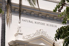 Natural History Museum Royalty Free Stock Photo