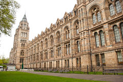 The Natural History Museum Royalty Free Stock Image