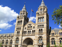 Natural History Museum. The Natural History Museum built between 1873-80 located on Exhibition Road in London's Kensington is renowned for its collection of Royalty Free Stock Photos