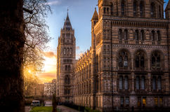 The Natural History Museum at golden hour Stock Photography