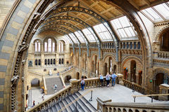 Natural History Museum interior arcade with people in London Stock Photos