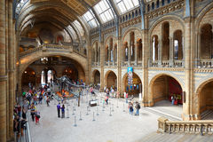 Natural History Museum interior with people in London Stock Photography