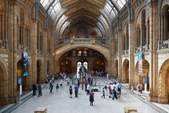 Natural History Museum interior with people in London Royalty Free Stock Photography