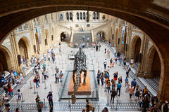 Natural History Museum interior with people in London Stock Photo