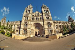 Natural History Museum, London. Entrance of the Natural History Museum, London, UK Royalty Free Stock Images