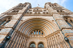 Natural History Museum, London. Royalty Free Stock Image