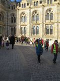 Natural history museum, London. Children organised tour.