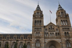 Natural History Museum in London Royalty Free Stock Photos